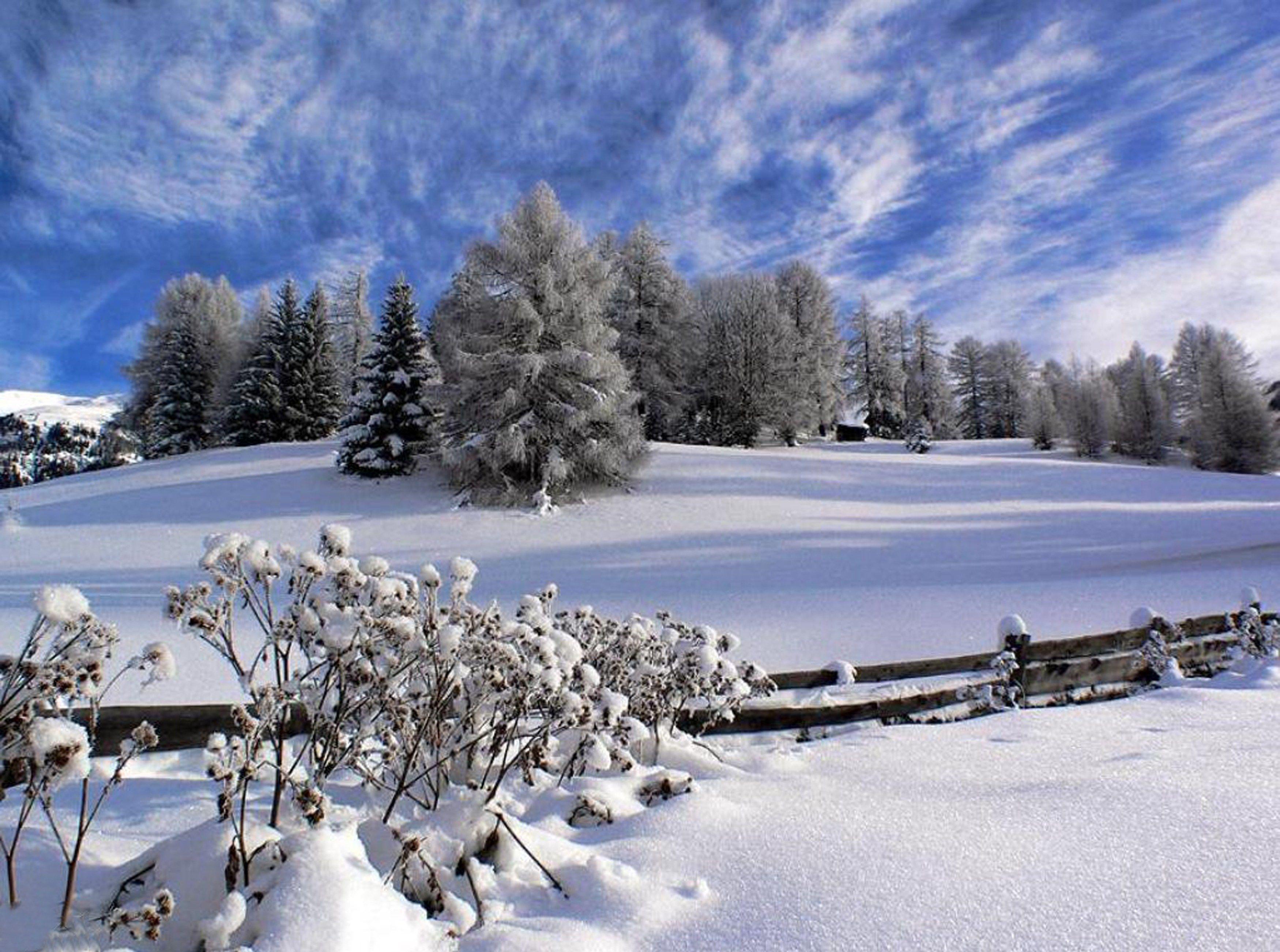 Fond d ecran paysage d hiver for Paysage gratuit